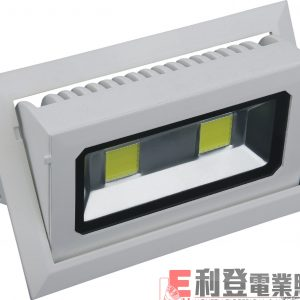LED天花射燈TODI-2001