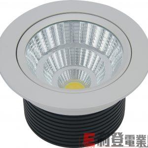 LED天花燈TODI-2009